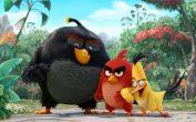 دانلود انیمیشن پرندگان خشمگین - The Angry Birds Movie 2016